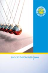 Báo cáo kinh doanh 2012