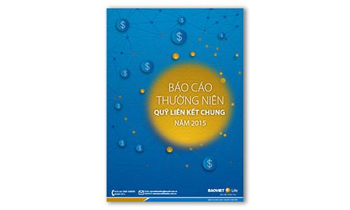 Bao-Cao-Thuong-niem-Quy-Lien-ket-chung-nam-2015 copy