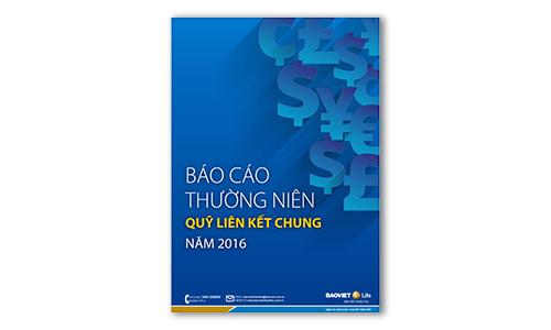 Bao-Cao-Thuong-niem-Quy-Lien-ket-chung-nam-2016 copy