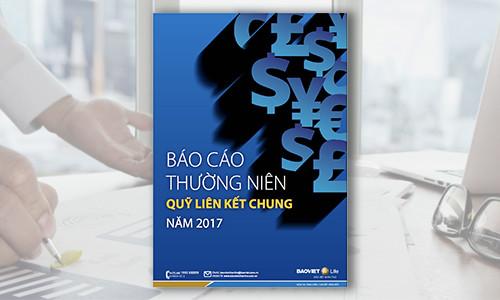Báo cáo Thường niên Quỹ Liên kết Chung năm 2017
