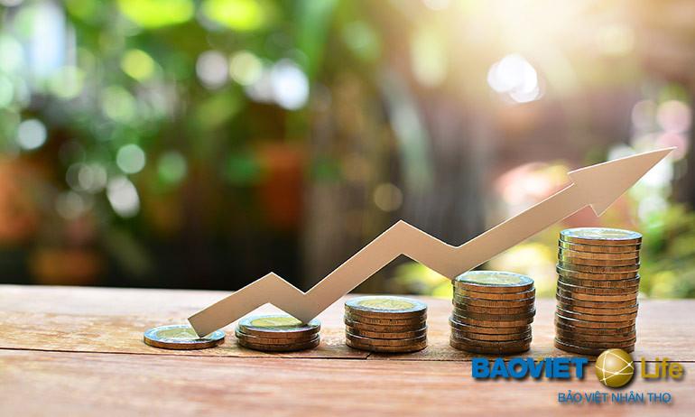Tham gia đầu tư với bảo hiểm nhân thọ đưa lại lợi nhuận ổn định hàng năm